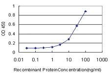 Anti-PRDX1 Mouse Monoclonal Antibody