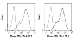 Anti-CD86 Rat Monoclonal Antibody (APC (Allophycocyanin)) [clone: GL-1]
