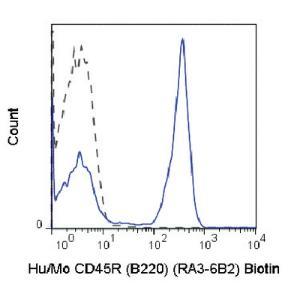 Anti-CD45R Rat Monoclonal Antibody (Biotin) [clone: RA3-6B2]