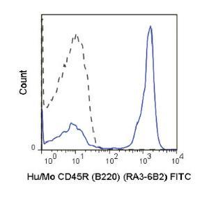 Anti-CD45R Rat Monoclonal Antibody (FITC (Fluorescein)) [clone: RA3-6B2]