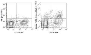 Anti-EMR1 Rat Monoclonal Antibody (FITC (Fluorescein)) [clone: BM8.1]