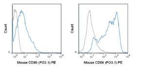 Anti-CD86 Rat Monoclonal Antibody (PE (Phycoerythrin)) [clone: PO3.1]