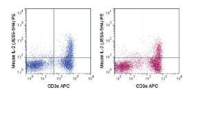 Anti-IL2 Rat Monoclonal Antibody (PE (Phycoerythrin)) [clone: JES6-5H4]