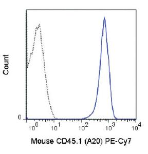 Anti-CD45.1 Mouse Monoclonal Antibody (PE (Phycoerythrin)/Cy7®) [clone: A20]