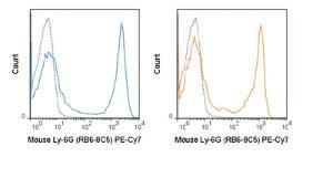 Anti-Ly-6G Rat Monoclonal Antibody (PE (Phycoerythrin)/Cy7®) [clone: RB6-8C5]