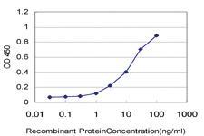 Anti-CD34 Mouse Monoclonal Antibody