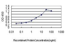 Anti-FAIM3 Mouse Monoclonal Antibody