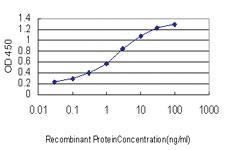 Anti-GHR Mouse Monoclonal Antibody
