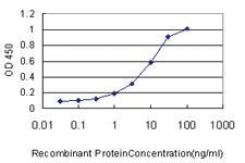 Anti-GNG7 Mouse Monoclonal Antibody