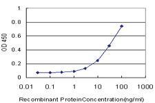 Anti-HABP2 Mouse Monoclonal Antibody