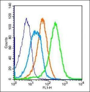 Flow cytometric analysis of (mo) Splenocytes Cell using PCDH12 antibody.
