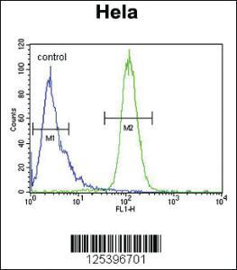 Anti-INTS10 Rabbit Polyclonal Antibody