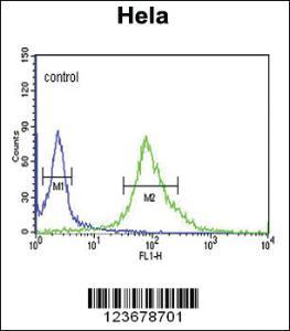 Anti-DDX49 Rabbit Polyclonal Antibody