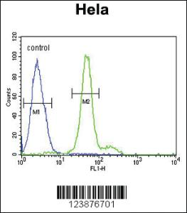 Anti-ELOVL5 Rabbit Polyclonal Antibody