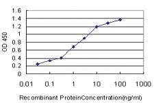 Anti-TWSG1 Mouse Monoclonal Antibody