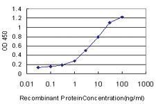 Anti-MSR1 Mouse Monoclonal Antibody