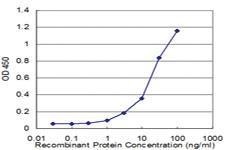 Anti-NUDT21 Mouse Monoclonal Antibody