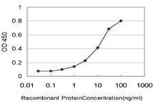 Anti-PCDHA6 Mouse Monoclonal Antibody