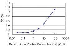 Anti-PLA2G12A Mouse Monoclonal Antibody