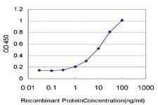 Anti-PLA2G1B Mouse Monoclonal Antibody